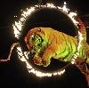 Цирки в Черемисиново
